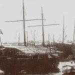 La Daino ancorata al molo di Genova