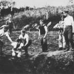 Uccisione di prigionieri a Jasenovac