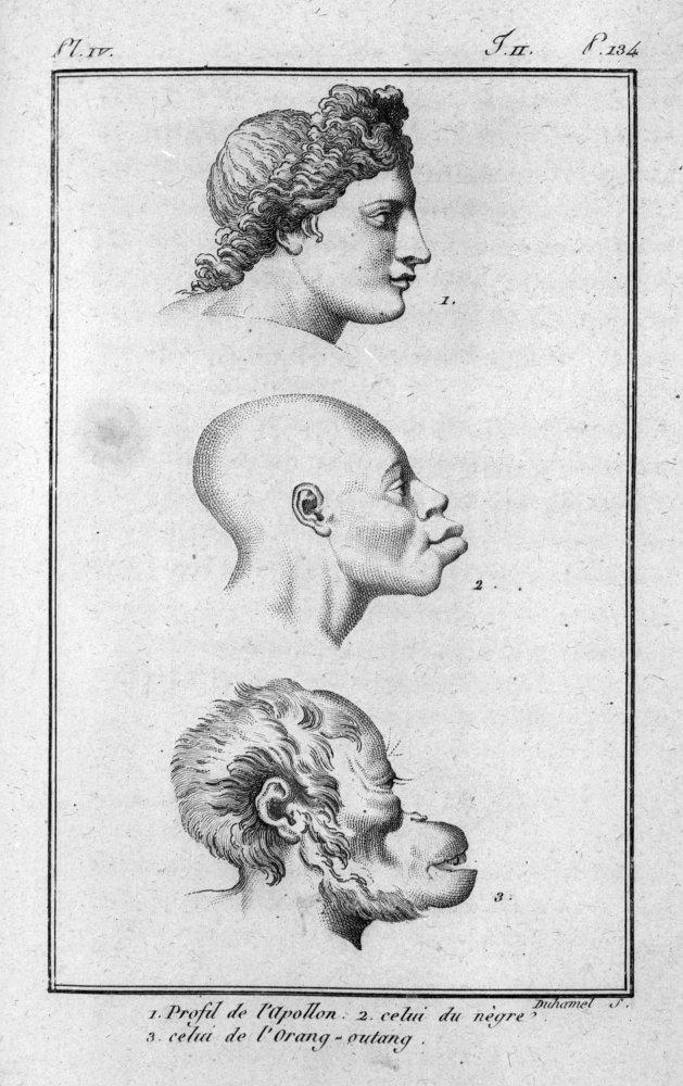Una pagina dell'Histoire naturelle du genre humain