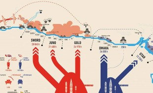 infografica3